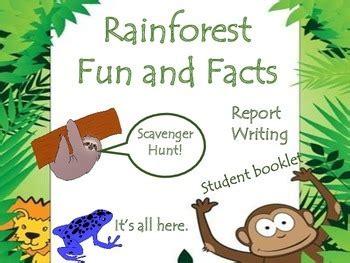 amazon rainforest animals  facts  milliebee tpt