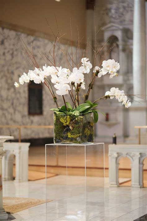phalaenopsis orchid decor