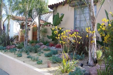plants in san diego xeriscape plants san diego water wise landscape gardening california