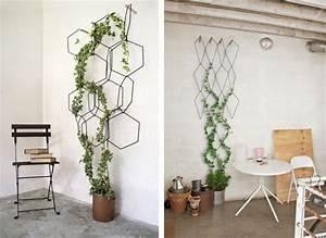 Plante Intérieur Grimpante : anno la treille murale modulable lls salon salle manger pinterest treillis murale ~ Louise-bijoux.com Idées de Décoration