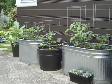 How To Do Vegetable Gardening In Containers