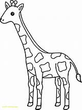 Giraffe Coloring Pages Giraffes Tall Easy Drawing Printable Animal Wecoloringpage Sheets Getdrawings Getcolorings Pa Pag sketch template