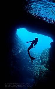 Silhouette Of A Mermaid Underwater