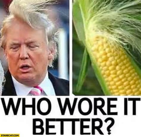 wore   donald trump corn haircut starecatcom
