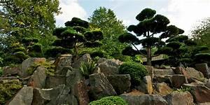 Japanischer Garten Pflanzen : egapark ~ Markanthonyermac.com Haus und Dekorationen