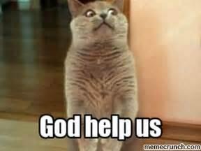 Shocked Meme Generator - shocked cat