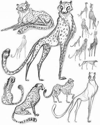 Cheetah Character Turnaround References Artists Final