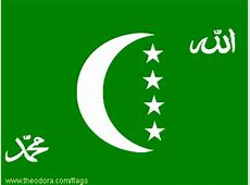 Green FLags Flag Image Identifier