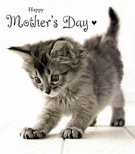 Cute Kitten Happy Mother's Day Card | Cards | Love Kates