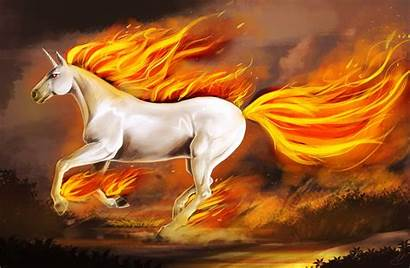 Unicorn Rapidash Wallpapers Computer Ponyta Deviantart Shiny