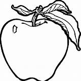 Apple Coloring Pages sketch template