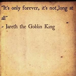 Best 25+ David ... Labyrinth Romantic Quotes