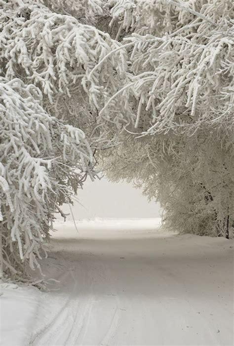 Die 25+ Besten Ideen Zu Schnee Auf Pinterest  Winter, Winter Hintergründe Und Winter Schnee