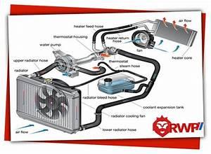 Automotive Thermostat Diagram