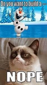 Frozen Grumpy Cat Quotes. QuotesGram