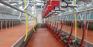 Pearson Ireland - Dairy Systems - Milking Machines