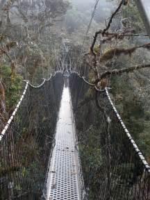 Peru Manu National Park 1920 X 1000