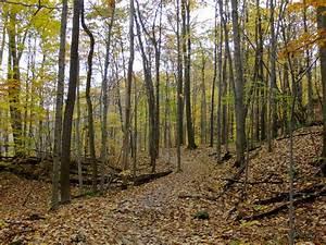Cuyahoga Valley National Park MowryJournal com