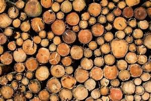 Granulés Piveteau Avis : vente et livraison de granul s de bois piveteau proche du havre vente bois de chauffage et ~ Medecine-chirurgie-esthetiques.com Avis de Voitures