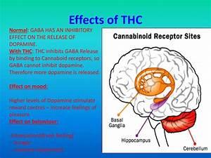thc stimulant or depressant