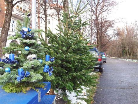 christbaumverkauf und weihnachtsb 228 ume in m 252 nchen das