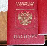 Вписать ребенка в паспорт рф через мфц