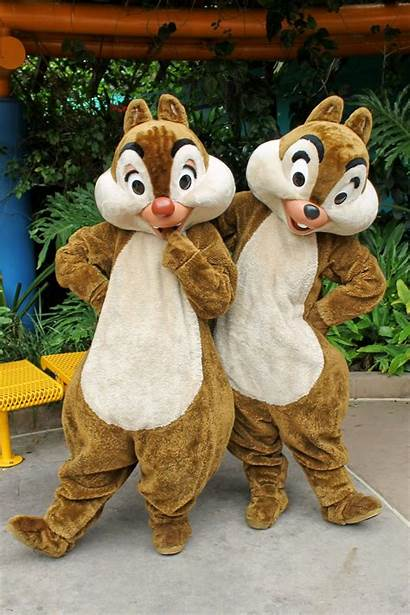 Disney Animal Characters Kingdom Character Location Discovery