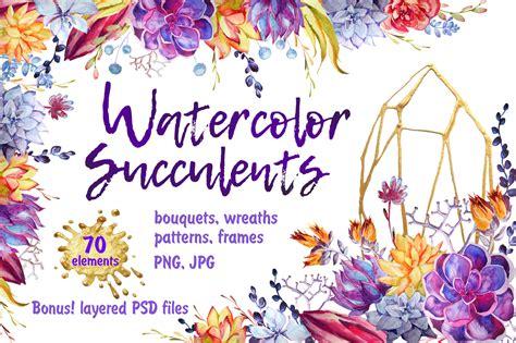 watercolor succulents clipart psd  illustrations