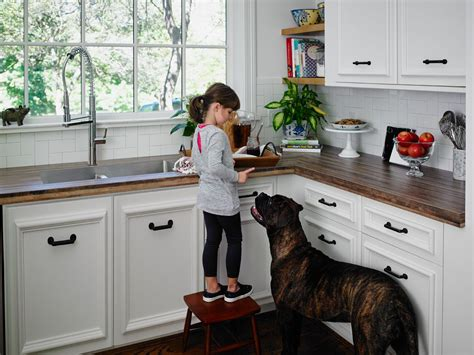 kid friendly pet friendly  budget friendly click