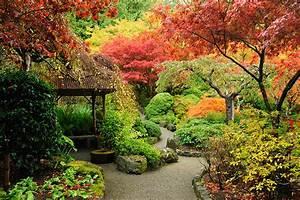 Pflanzen Japanischer Garten : bildquelle 2009fotofriends ~ Lizthompson.info Haus und Dekorationen