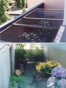 frankfurter katzenschutzverein absicherung fur katzen in With balkon teppich mit wenn katzen an tapeten kratzen
