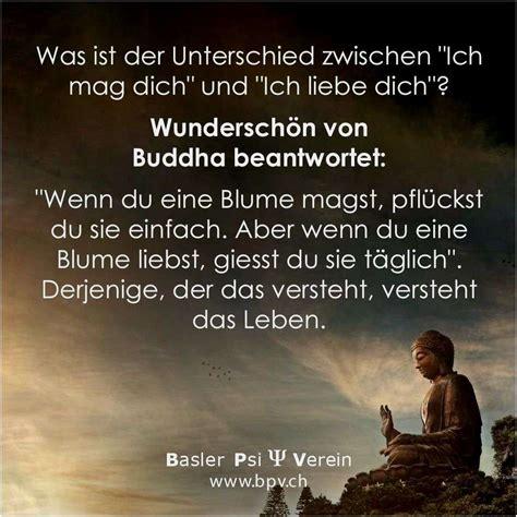zitate lebensweisheiten buddha quotes of the day
