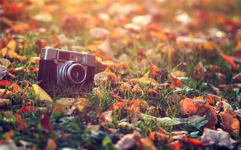 free 20 vintage photography desktop wallpapers in psd
