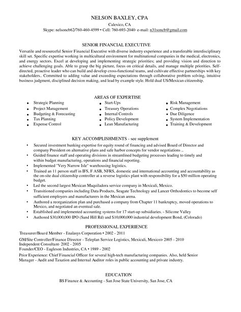 audit skills resume