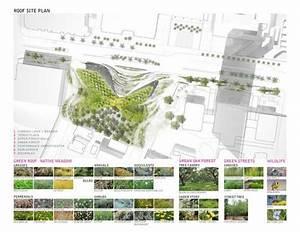 Strategy Phase Landscape Diagram