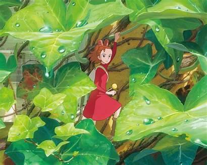 Miyazaki Hayao Birthday Wallpapers Ghibli Studio