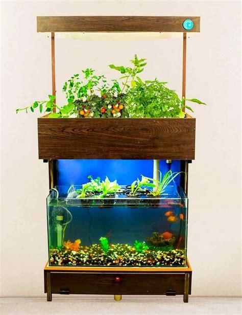 crofters aquaponics ecosystem  bangalore delivery