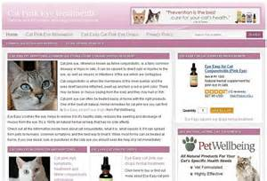 cat pink eye treatment herbal cat remedies orlando pet services