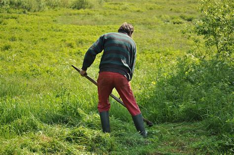 Wie Tief Wurzelt Rasen by ᐅ Den Rasen Umgraben ᐅ So Macht Du Es Richtig