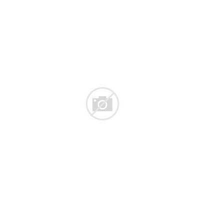 Scroll Paper Icon Note Open Roll Cartoon