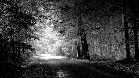 Wallpaper Black And White by Black And White Desktop Backgrounds 80 Images