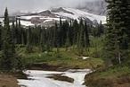 Cascades (ecoregion) - Wikipedia