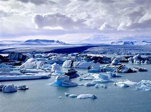 10 Facts About The Arctic National Geographic Kids
