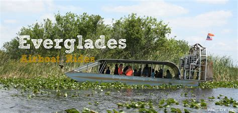 everglades fan boat rides exciting excursion exploring the everglades by airboat