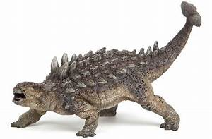 Ankylosaurus Pictures U0026 Facts The Dinosaur Database