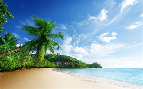 tropical beach wallpaper hd 14411 wallpaper walldiskpaper