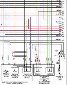 Problema En La Linea De Comunicaci U00f3n Entre El Pedal De
