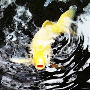 Yellow Koi - Black And White Art Painting by Sharon Cummings