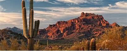 Arizona Covid Together Landscape Resources