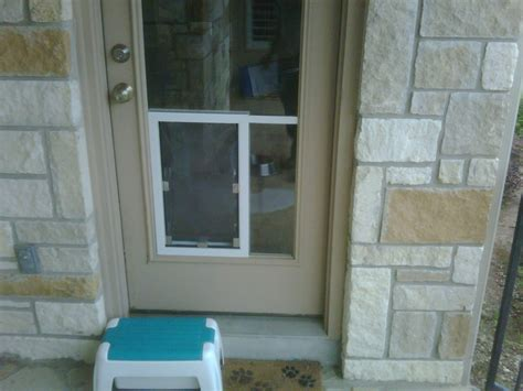 hale pet door hale pet doors san antonio pet door electric cat
